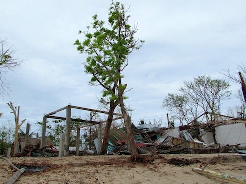 It's a beautiful island except for all the leafless trees and damaged homes.