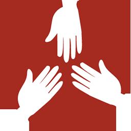 Volunteer Team Leader